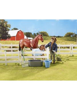 Breyer Classic New Arrival at the Barn